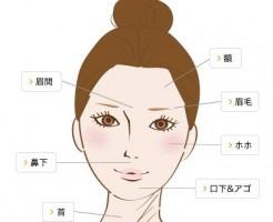 アリシアクリニック 顔脱毛の範囲