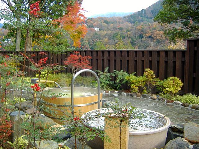 箱根天然温泉てのゆ 露天風呂