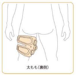 シックスパッド(SIXPAD)レッグベルトの付け方・貼る位置(太もも裏側)