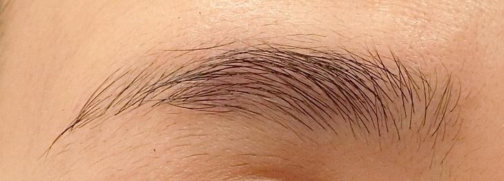 ブラシ後(左眉)